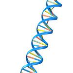 Nos 3 axes : ADN de notre métier